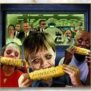 Na tanjurima političke i korporativne elite nema GMO proizvoda