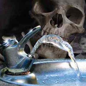 Krešimir Mišak: Fluoridni horor