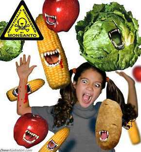 GMO pocetak gladi