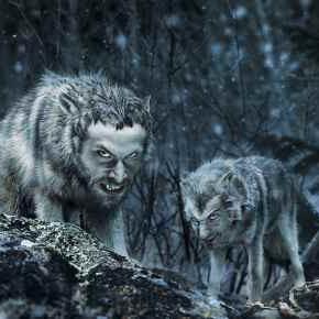 Homo homini lupus (Čovjek je čovjeku vuk)