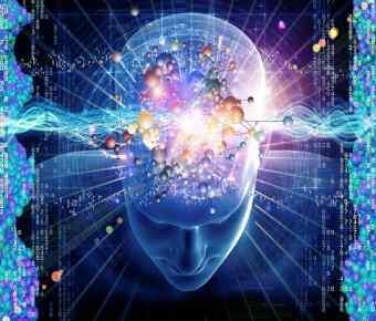 Kvantna biologija svijest svjesnost
