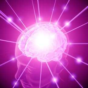 Mozak um