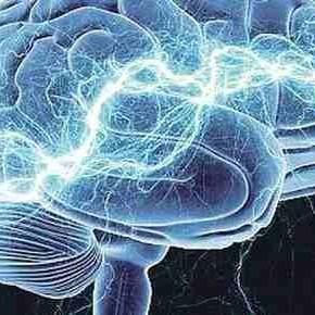 Ljudska inteligencija koja vene
