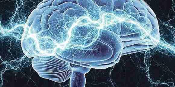 Misli um mozak