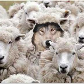 Skriveni na otvorenom: Vladaju li psihopati svijetom?