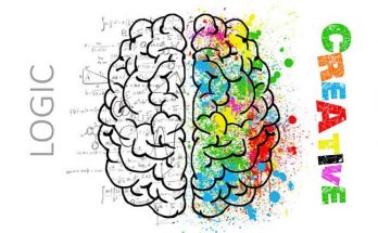 mozak i moždani udar
