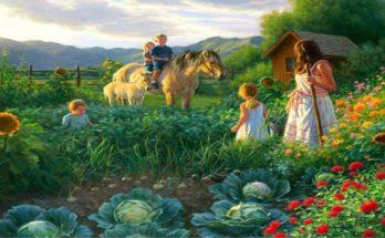 zemlja hrana uzgoj